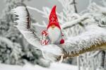 Oferta Bożonarodzeniowa